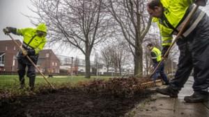 Tv-programma vindt plastic en blik in bodemverbeteraar bokashi; Limburgse gemeenten 'werken met schone variant'