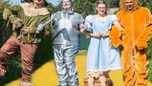 Vocalgroup Mes Amie haalt 'Wizard of Oz' naar Amby