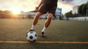 Zeven clubs in Noord-Limburg hebben de volle buit: Kronenberg, BEVO, Kessel, Hegelsom, Sportclub Irene, Wittenhorst en Achates.