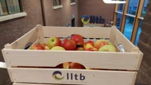 Boeren en tuinders delen groente en fruit uit in Blerick en Venlo