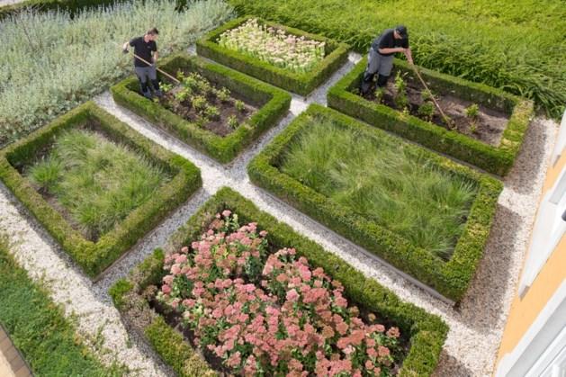 Bij Dolmans Landscaping Group begonnen dit jaar acht mensen via WSP Parkstad