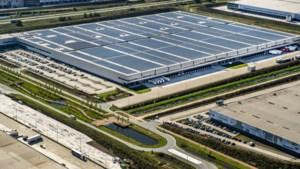 Provincie wil verplichting zonnepanelen op nieuwe gebouwen
