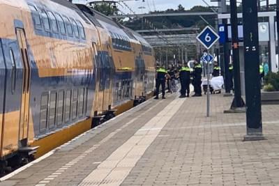 Verwarde man vernielt ruit in trein op station Venlo en wordt gearresteerd