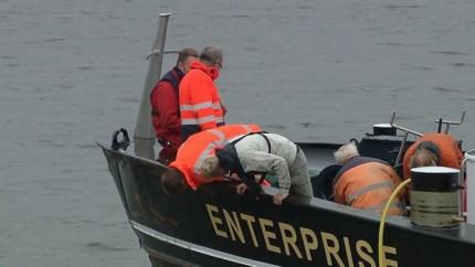 Video: Scheepvaart hervat en veerpont weer in de vaart na aanvaring op Maas