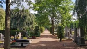 Vraagtekens rond graven in Meerssen en Bunde, gemeente zoekt nabestaanden en rechthebbenden