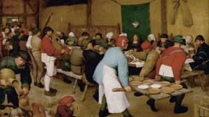 Is Pieter Brueghel dan toch een Limburger?