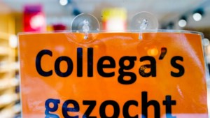 Ambtenaren gezocht: honderden vacatures in de Limburgse gemeentehuizen