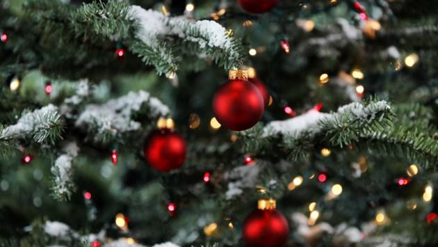Koren gaan weer zingen rond de kerststal in de Grote Kerk