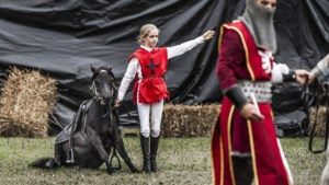Tweedaags ridderkamp met roofvogels, boogschieten en paardrijden als een ridder