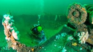 Biologen duiken boven Doggersbank: toch hoop op herstel van het zee- en bodemleven