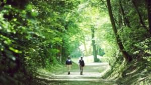 Bezinningswandeling Holy Hill Walk naar de Kollenberg in Sittard