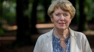 Radicale koerswijziging pensioenfonds ABP: 'Er zijn in het verleden te kleine stappen gezet'