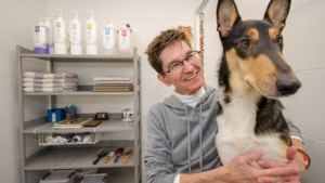 Gerrie (56) zag bij justitie de slechtste kant van de mens, ze volgde haar droom en is nu hondentrimster