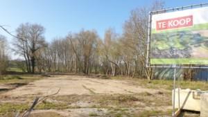 Kwetsbaar natuurgebied dat moet wijken voor luxe villa's in Spaubeek? 'Onacceptabel', vinden omwonenden